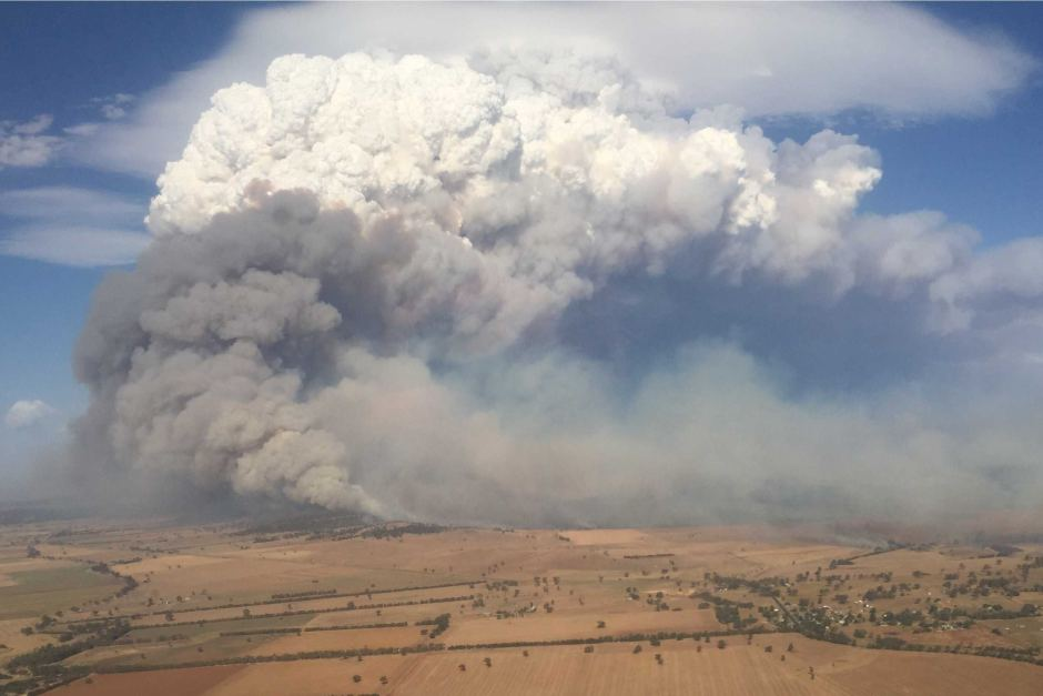 The Hazards of Bushfire Smoke